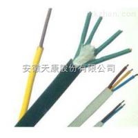 DJFPFP,DJFFRP耐高温计算机电缆-安徽天康集团股份有限公司
