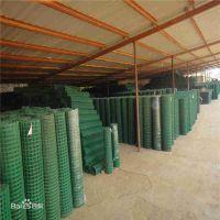 {荷兰网}供应优质绿色浸塑电焊网@养鸡场绿色围栏网@荷兰网厂家