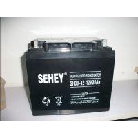 西力蓄电池SH38-12/ups电源蓄电池/SEHEY12v38ah/阀控式密封电池