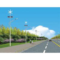 唐山太阳能路灯 新能源灯具飞鸟照亮您一生 供应河北地区