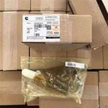 柴油机配件-原装耐用-4955706水泵【M11】