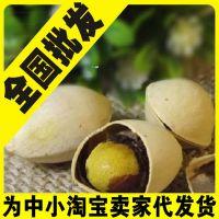 新货银杏白果人参果开心果开口果长寿果 香脆可口防三高降血压!