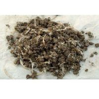 供应甘肃鸡粪有机肥 有机肥生产厂家有哪些