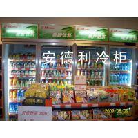 广州安德利厂家直供新品高端优质低噪音高容量超省电超市饮料冷冻展示柜 超市冰柜