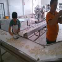 饺子流水线 饺子冷冻输送全套流水线生产线 河南民生食品机械厂