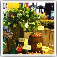 人造红苹果树 PU青苹果树 农家乐休息区装饰仿真树 玻璃钢仿真树 规格可定制