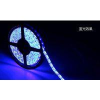 LED植物灯条生产厂家  植物补光照明低压软灯带 蓝光 450NM波段