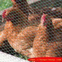 促销石笼网/六角网/养殖网/养鸡网厂家直销价位低廉