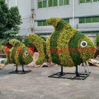 五色工艺 仿真植物绿雕仿真植物造型逼真有创意外景项目市政工程