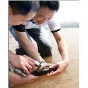 鱼类PIT芯片标记 动物PIT芯片标记 动物PIT标记