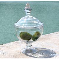 优质供应家居装饰玻璃摆饰 创意欧式玻璃摆件玻璃罐MV793-25