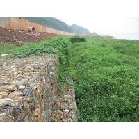 安平石笼网厂家供应热镀锌抗洪护坝用Q235材质 100*120孔径石笼网