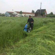 宏兴牌牧草手推剪草机 林业剪草机 汽油割草机型号