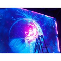 无锡夜光隐形彩绘,飞斯特艺术墙绘专业制作隐形壁画