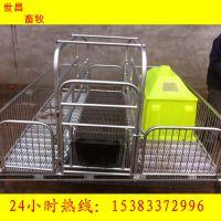 山东潍坊世昌畜牧2.1*1.8单体母猪产床母猪位铸铁板