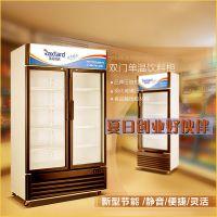 瑞克斯达/Raxtard/LG-350/饮料展示柜商用冷柜超市便利店立式双门制冷展示柜