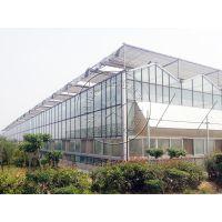 承建热镀锌骨架现代连栋智能温室大棚—瀚洋温室工程
