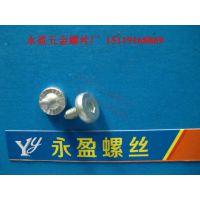 中山东凤镇螺丝厂-生产伞头机牙螺丝-大扁头机螺钉-304不锈钢螺丝