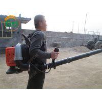 园林背负式吹叶机 润华 路面清理吹风机 自走式抛雪机