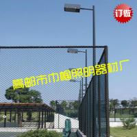 工厂直销篮球场灯 6-10米室外户外高杆防水道路照明篮足球泛光灯
