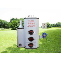 生物质立式蒸汽锅炉