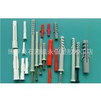 厂家廉价直销直通式塑料壁虎/塑料墙塞/品种多,规格全,交期快