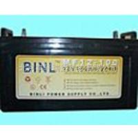 滨力蓄电池12V-100Ah