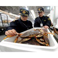海鲜进口关税 活海鲜进口报关行 海鲜进口关税查询