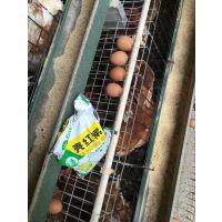 改变蛋壳颜色的产品原料-微尔壳红素稳定有效