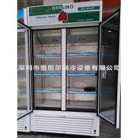 南凌冷柜牌 LG-518 立式双门啤酒饮料冷藏冰箱/水果冷藏保鲜直冷