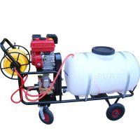 菜园桶装喷雾器厂家 可以合理使用的桶装喷雾器规格 润丰机械