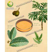 L-茶氨酸 3081-61-6 高含量标准品 世洲直供