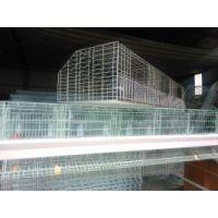 新疆蛋鸡笼 库尔勒育雏笼 乌鲁木齐鸡笼 伊犁鸡笼厂 喀什鸡笼供应 出口型鸡笼八钢材质