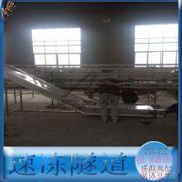 饺子生产线专用运输隧道,速冻隧道,往复式多层隧道供应