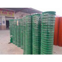 蔬菜种植防护网;果木基地防护网|淄博浸塑绿色铁丝防护网供应