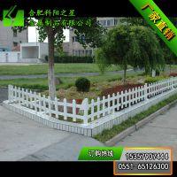 【科阳之星】厂家爆款推荐 热镀锌绿化pvc草坪护栏 喷塑护栏 市政园林护栏