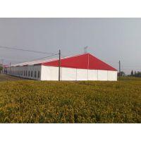 杭州会展篷房,中高端活动篷房出租,车展试驾会篷房