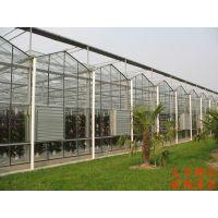 湖南省内提供优质温室大棚设计建设