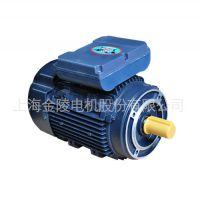 厂家供应IEC高效电机 YLJ系列双值电容异步电容电动机SMC电机