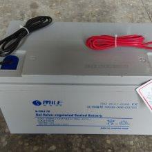 河南信阳新农村建设路灯用胶体免维护蓄电池12/24V100AH厂家供应