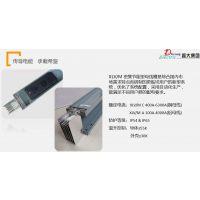 上海母线槽厂家 耐火型母线 振大集团1000A/5P 防火母线槽