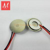 供应 东莞中迈电子 不锈钢微孔雾化片 超声波雾化片