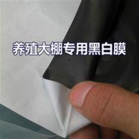 巨龙包装(图),黑白pe保护膜,修武县pe保护膜