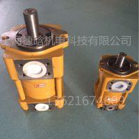 NBZ4-D63F 齿轮油泵 现货供应捷晗液压 内啮合齿轮泵 无泄露