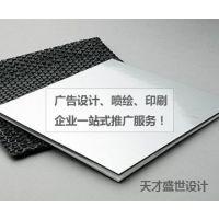 全国承接 品牌Logo、VI设计、画册印刷包装、网站制作、网店设计 深圳天才盛世