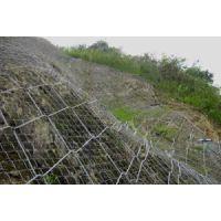 河北铁丝网厂定制蜘蛛网-SPIDER系统 护坡钢丝网 镀锌电焊网 丝网除沫器