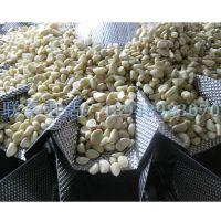 厂家直销720W长春袋装蒜米全自动包装机