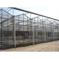 火龙果种植镀锌钢管温室大棚