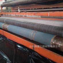 山东腾疆工程生产销售GCL膨润土防水毯 地下车库花园水池市政工程用天然纳基防水毯