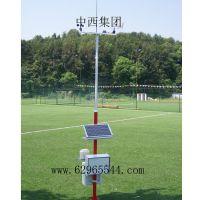 中西(LQS现货)7要素自动气象站 型号:WPH1-7库号:M391818